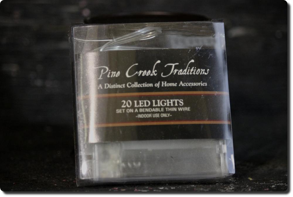 20 LED Light